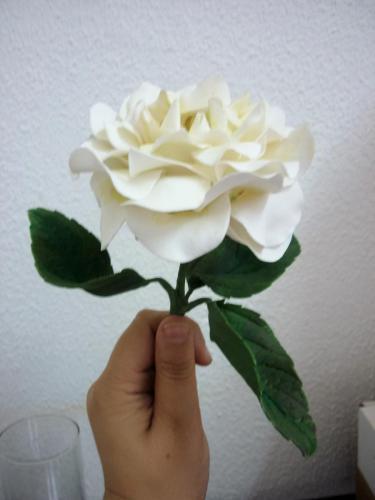 Rosa porta aliancas branca haste1